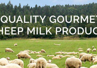 Best Baa Dairy
