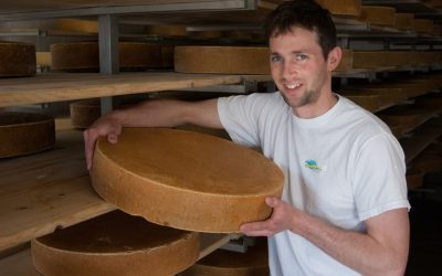 Gunn's Hill Artisan Cheese