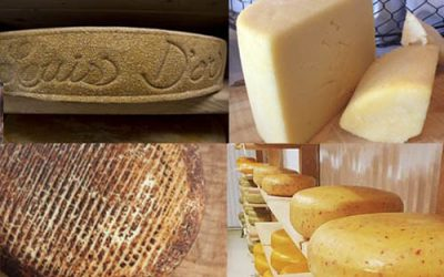 Raw Milk Cheese Appreciation Day GIVEAWAY